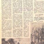 Газета Кіровоградська правда від 27.09.1982 р.